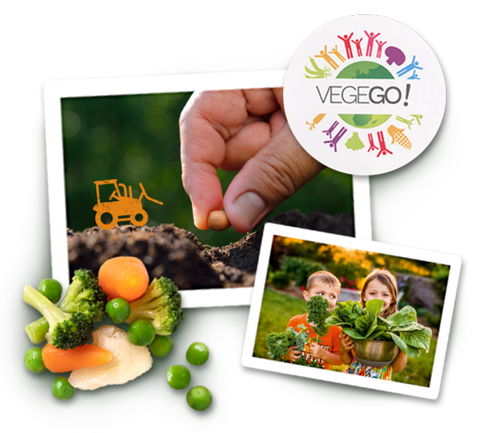 image collage for vegego