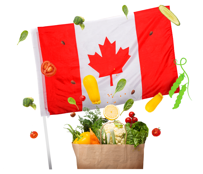 Canadian flag with vegetables